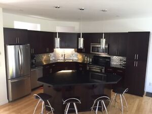 Beautiful Expresso Maple Kitchen