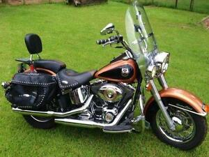 Stock HD Softail or Touring Wanted