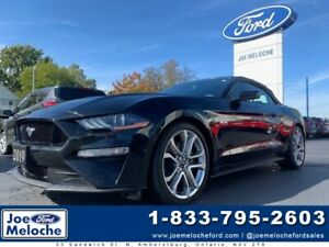 2019 Ford Mustang GT 5.0L DEMO