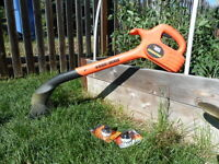 Weed eater, cordless electric