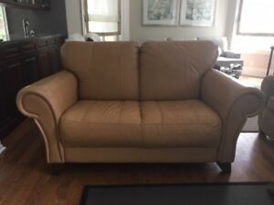 Love-Seat Size Leather Couch