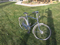 Cruiser Style Bike For Sale