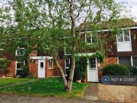 3 bedroom house in Cedar Drive, Newbury, RG20 (3 bed)