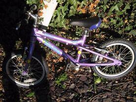 Unisex childs bike