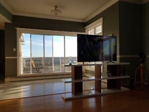 Available now. Room in 2400sqf Penthouse Condo.Amazing view!!