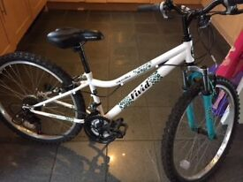 """Apollo Vivid 24"""" girls MTB, age 8-11, in vvgc as hardly used - £155 new"""