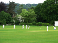 Summer Hardball Cricket Practise Sessions