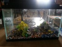 Fish aquarium**PRICE REDUCED**