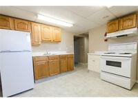 Bright and Spacious Basement Suite in Allendale- Pet Friendly!