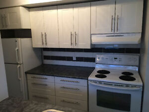 3 BDR Townhouse Steps from U of M Fort Garry - August 1st