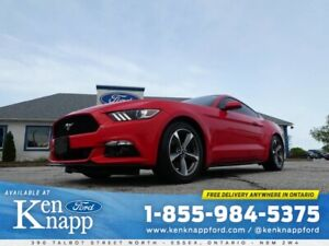 2017 Ford Mustang EcoBoost Premium- LEATHER- MANUAL- FASTBACK