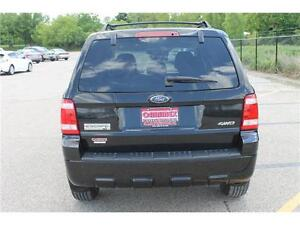 2008 Ford Escape *XLT* / V6 . 4WD . SUNROOF . POWER SEATS Kitchener / Waterloo Kitchener Area image 4