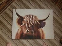 picture, canvas, Highland cow