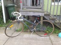 REDUCED PRICE! Vintage 12 Speed Mixte Supercycle