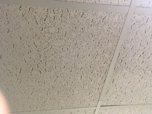 Ceiling Tiles for Sale