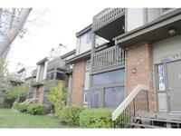 MEGA AFFORDABLE Condo w/ 2 bedrm  in the HEART OF MAPLES!!F