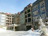 Spectacular 3 Bdrm 2 Bath Corner Unit in the Snowbird Lodge