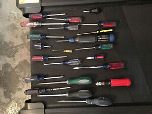 Assorted ScrewDriver Set