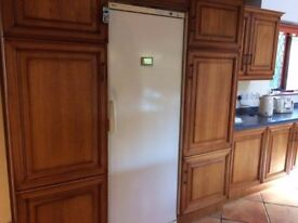 Bosch tall fridge, perfect working order, A category efficiency, top condition- £125 ono