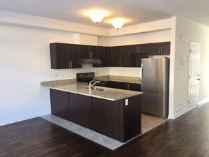 brand new 3 bdrs townhouse only for $1550 must to see!!!