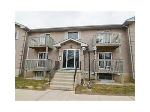 Bright Clean and Spacious Condo Apartment available June 1st