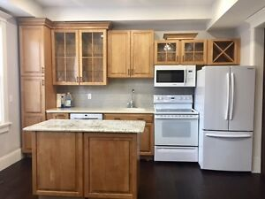 Rare Downtown 1 Bed Renovated Apartment - Available Now
