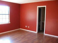 Painting&Decorating/Painter/Decorator/Good Prices/Warranty/Paint/Experience