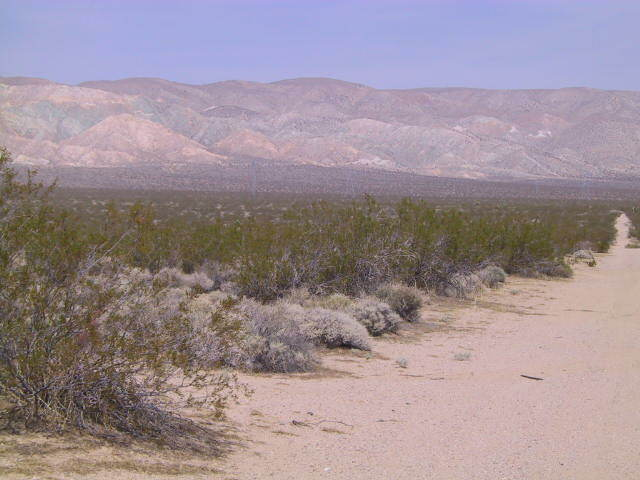 PRICE REDUCED DUE TO VIRUS - 30 ACRES MOJAVE KERN COUNTY 70 MIN TO L.A. - $100.00