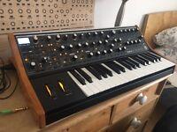 Moog Sub 37 Tribute // excellent condition