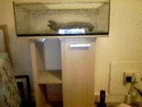 Open Top 10 Gallon (30ltr) Glass Aquarium with Beech Stand