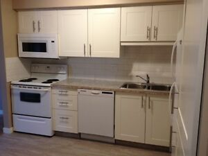 3 bedroom townhouse with garage for rent near Clareview RecCentr
