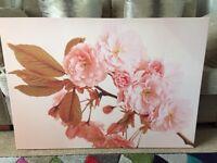 Canvas picture cherry blossom