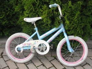 Reconditioned Bike
