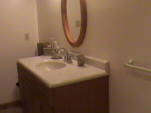 Furnished basement apartment for Rent in Batawa