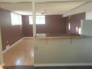 1 bdrm Basement suite. $1200/month Everything included