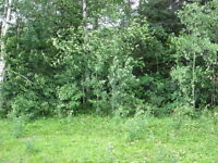 Remax is selling Land on HRR , Happy Valley-Goose Bay, NL