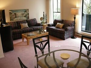 FULLY FURNISHED EXECUTIVE ONE BEDROOM PLUS DEN SUITE