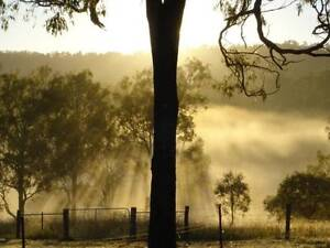 Well set-up farm - Lifestyle, Secure Income, close to city Beaudesert Ipswich South Preview