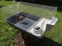 Guinea pig/rabbit cage for sale