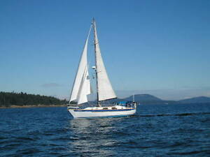 Offshore Sail Boat