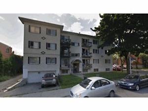 Multi-logements - 11 Plex à vendre à Montréal
