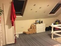 Large attic room for rent