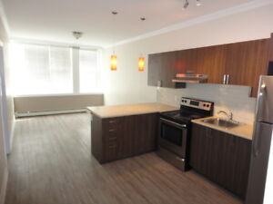 Newly Renovated 2 Bedroom