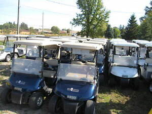 SALE! 2008 EZGO RXV 48v Electric Golf Cart Patriot Blue Kitchener / Waterloo Kitchener Area image 6