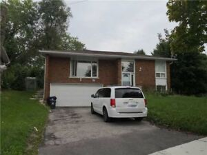 NICE 3 BED BUNGALOW WITH 2 BED BASEMENT APARTMENT!