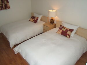 FURNISHED condo apartment - 1 bedroom - wifi, cable TV, monthly