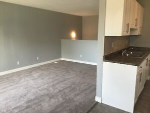 2 Bedroom - Great Prices - Utilities Included - Poplar Grove... Edmonton Edmonton Area image 8