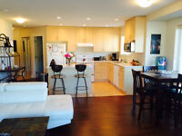 Modern furnished room in 2 bed 2 bath