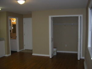 Basement Suit For Rent Mission May 1st. Vacancy