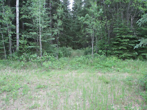 Lake lots Near Bonnyville, MOOSE LAKE